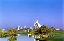 Dubai Desert Classic 2008