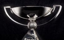 Fedex Cup: simpatica Ad