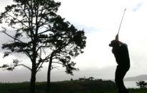 BA CA Golf Open e Stanford St. Jude Championship
