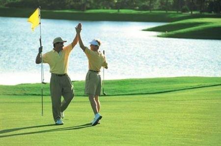 Golf 2009 up