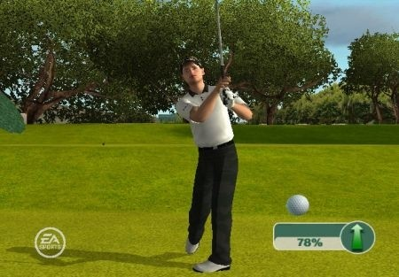 Tiger Woods PGA Tour 11 gioco