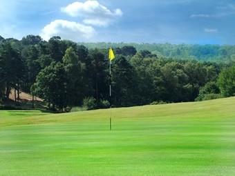 mondo_golf